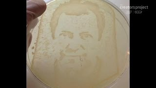 Science and art team up to create cancer cell and bacteria portraits, Ep. 174