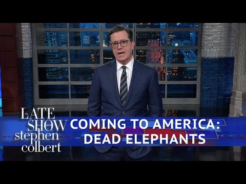 Trump Reverses Obama's 'Elephant Trophy' Policy