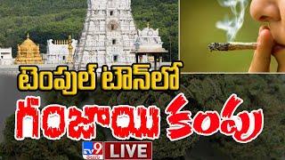 టెంపుల్ టౌన్లో గంజాయి కంపు LIVE || Ganja In Tirupati  - TV9 Digital - TV9