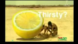 Africa Funny Advertisements