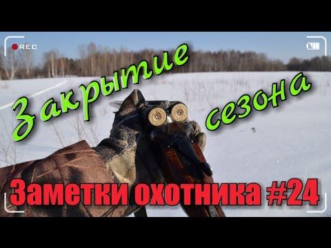 Охота. Закрытие зимнего сезона 2016-2017г.г. Охота на рябчика зайца тетерева. Hunting in russia