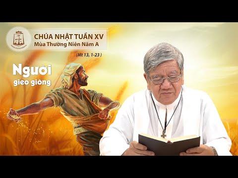 SN Lời Chúa CN Tuần XV Mùa Thường Niên Năm A (Mt 13, 1-23) - Lm Giuse Nguyễn Tiến Lộc, C.Ss.R. 12/07/2020