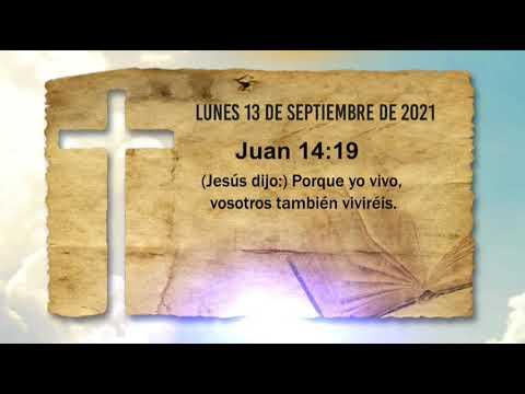 (Jesús dijo) Porque yo vivo, vosotros también viviréis