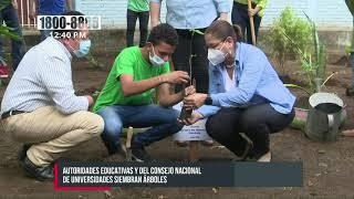 Autoridades educativas en Nicaragua siembran árboles en el colegio Ramírez Goyena