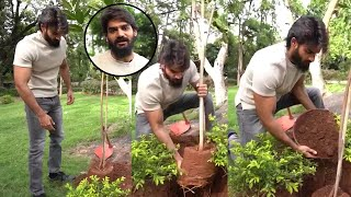 Hero Karthikeya Accepts Green India Challenge - Telugu Film News | Latest Tollywood News | TFPC - TFPC