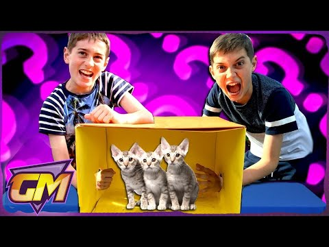 What's In The BOX Challenge!! - Kids React