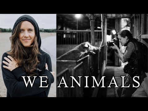 RISKING IT ALL FOR A PHOTO | JO-ANNE MCARTHUR | WE ANIMALS