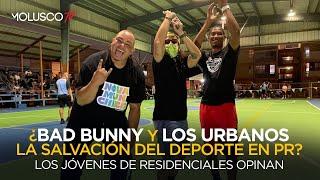 ¿ Bad Bunny y los Urbanos la salvación del deporte en PR  Los jóvenes de residénciales opinan ????