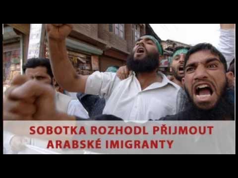 Tomio Okamura: Sobotka rozhodl přijmout arabské imigranty