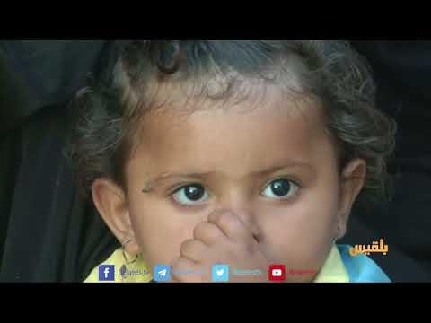 وثائق تكشف توجه الانقلابيين للسطو على يمن موبايل وكمران واليمنية | تقرير: أسامة عادل