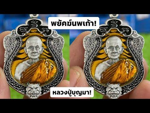 เหรียญรุ่น-พยัคฆ์นพเก้า-หลวงปู