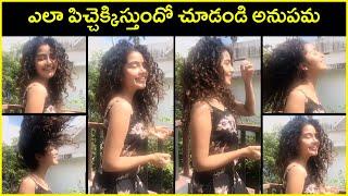 Cute Video : Actress Anupama Parameswaran Latest Video | Comedy Video of Anupama | Rajshri Telugu - RAJSHRITELUGU