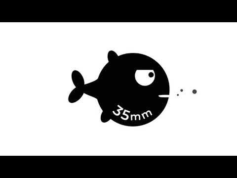 FUJIFILM GFX - More Than Full Frame