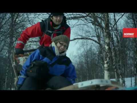 Escursioni in slitta trainata da caninella Norvegia del Nord