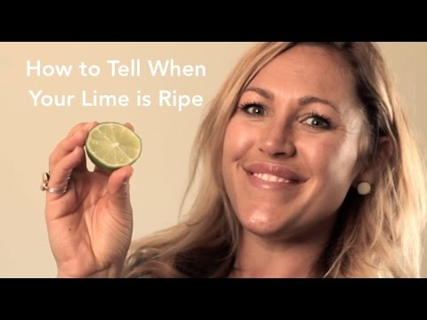 How To Tell When Your Lime Is Ripe - The FruitGuys
