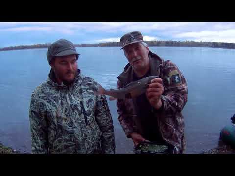 рыбалка на енисее осенью