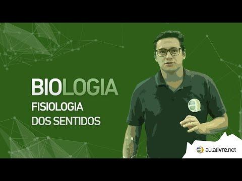 Biologia - Fisiologia- Fisiologia dos sentidos
