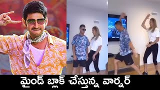 David Warner Awesome Mass Dance For Mahesh Babu Mind Block Song | Sarileru Neekevvaru - RAJSHRITELUGU