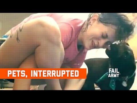 Pets, Interrupted (January 2020) | FailArmy