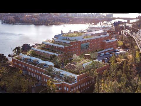 Green Transformation - The Value of Urban Greenery   White Arkitekter