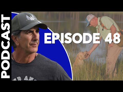 Gun Dogs - Talking Sport Dogs with Jeremy Criscoe of Whistling Wings Kennels - Labradors & Pointers