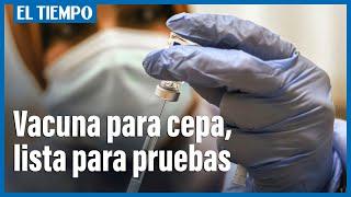 Vacuna de Moderna contra cepa de coronavirus, lista para pruebas