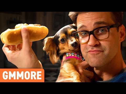 Hot Dogs for Dogs Taste Test