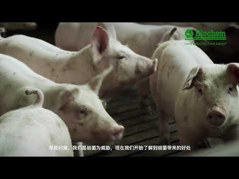 Landmandsfilm Biochem Chinese subtitles