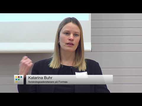 Information om utlysningen Synteser och forskningsprojekt för hållbart samhällsbyggande
