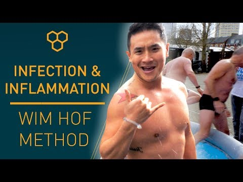Inflammation | Wim Hof Method