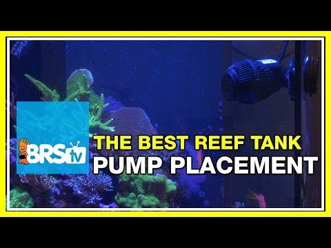 FAQ #32: Where should I direct my pumps flow - the tank's rock work, or the surface of the water?