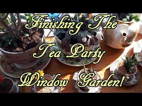Completing The Tea Party Window Garden!