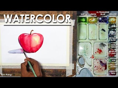 Watercolor Apple Painting for Beginners step by step Drawing to Coloring