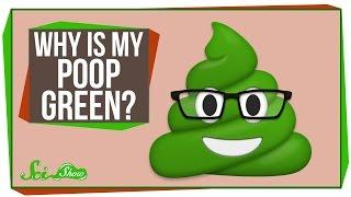 Why Is My Poop Green?