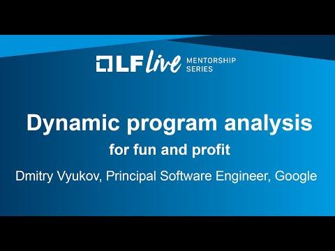 Mentorship Session: Dynamic Program Analysis for Fun and Profit