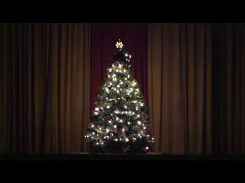 Annual Christmas Concert and Tree Lighting Ceremony