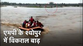 Madhya Pradesh के बाढ़ग्रस्त इलाकों में सैकड़ों जिंदगियां बचाने का काम कर रही NDRF Team - NDTVINDIA