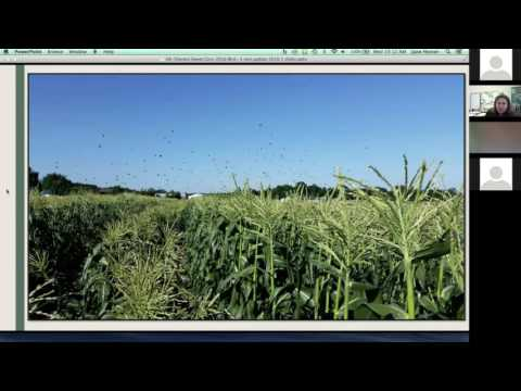 Second Annual Integrated Pest Management Online Conference: Part 2 of 5