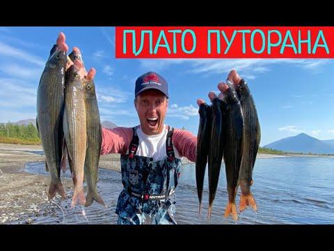 Рыбалка в запретных местах ПЛАТО ПУТОРАНА. САМОЛЕТ для рыбалки.