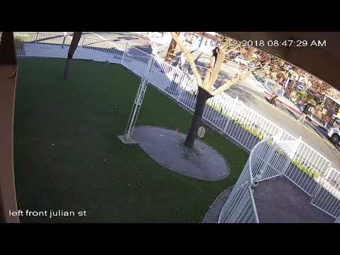 connectYoutube - San Jose hit and run