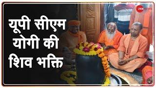 Gorakhpur मंदिर में Sawan के पहले सोमवार को UP CM Yogi ने की भगवान Shankar की अराधना - ZEENEWS