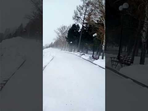 Томск пурга в Лагерном саду 20.02.2017 г.