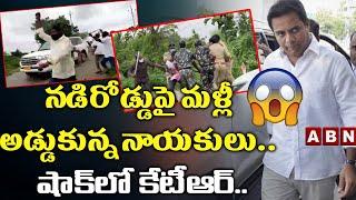 నడిరోడ్డుపై మళ్లీ అడ్డుకున్న నాయకులు..షాక్ లో కేటీఆర్.. Congress Leaders Stopped Minister KTR Convoy - ABNTELUGUTV