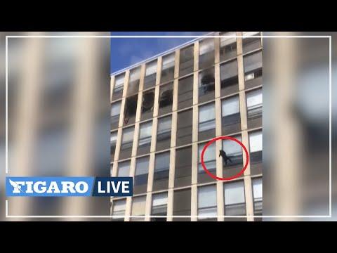 Le saut SPECTACULAIRE d'un chat du 5eme étage d'un immeuble en feu