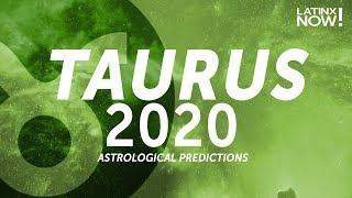 TAURUS 2020 Horoscope Predictions | Latinx Now! | Telemundo English