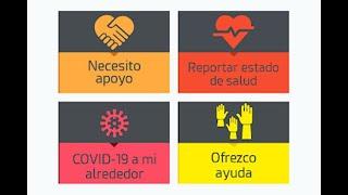 Lupa a las aplicaciones del COVID-19: ¿están protegiendo los datos de usuarios