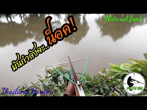 #SHOOT-FISH-ยิงปลาเกือบน็อค-เร
