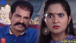 Manasu Mamata Serial Promo - 11th November 2020 - Manasu Mamata Telugu Serial - Mallemalatv - MALLEMALATV