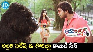 Allari Naresh & Gorilla Comedy Scene | Action 3D Movie Scenes | Raju Sundaram | iDream Movies - IDREAMMOVIES