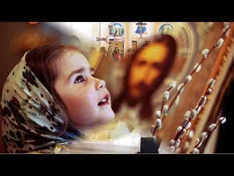[01] Catecismo | Preliminares: ¿Quién nos ha creado ¿Para qué nos ha creado Dios